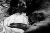 Geboortereportage-Hartennest-zwart-wit-2404