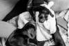 Geboortereportage-Hartennest-zwart-wit-2447