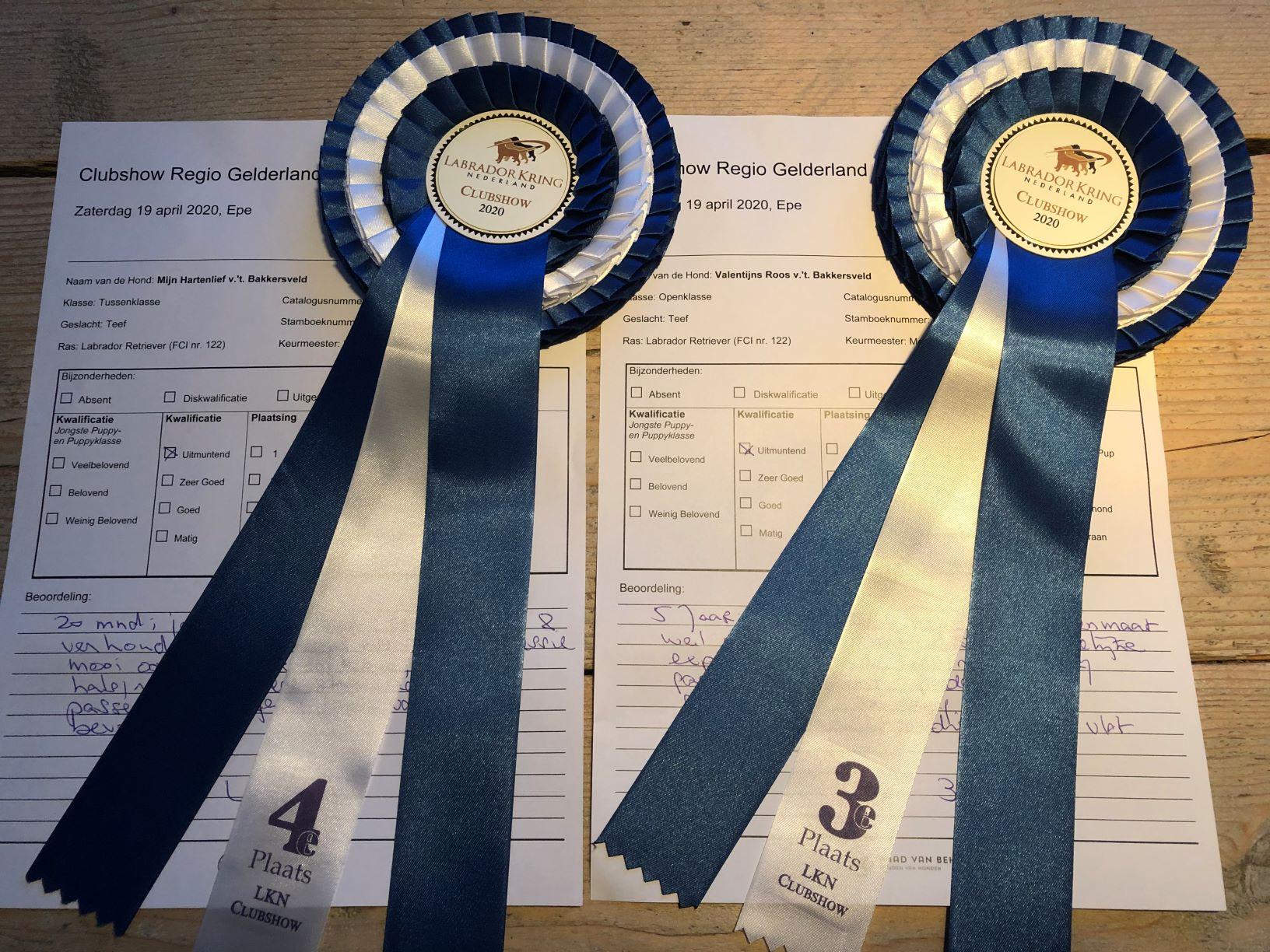 Maya en Rosie in de prijzen